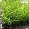 Polular Bicolor Artificial Grass für Landscaping