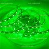 Flex LEIDENE van de Kleur van de macht Groene Strook met het Teken van Ce