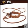 Acessórios de couro do animal de estimação do colar e da trela de cão dos produtos novos do animal de estimação do projeto