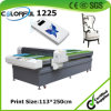 産業MDF Glass Furniture Manufacturing DIGITAL Printer Machine (colorful1225)