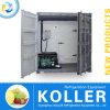 Containerized 1000kg машина создателя шипучки блока льда для обрабатывать рыболовства