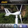 Exporindo ao sol a turbina de vento 300W do céu