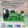 Zuverlässiges Hersteller Lvhuan CER anerkanntes grüne Leistung-Biogas Genset