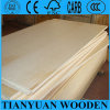 4*8ft Poplar Core Birch Commercial Plywood für Furniyure