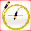 Om3 50/125 LC-LCのシンプレックス光ファイバパッチ・コードLC Sc FC St MPO Mu DIN D4の光ファイバパッチ・コード