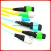 밖으로 MPO-LC 케이블 /Fan 접속 코드 Sm 12f (편평한 리본, 분지 2.0mm)