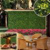 Зацветенная загородки зеленого цвета листьев изгородей ПЛЮЩА изгородь напольной искусственная
