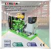 generador de la utilización del suelo del precio del bio generador del gas de 60 KVA el mejor
