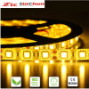 White caldo 5050SMD Strip Light Roll Light Tape Light Flexible LED Strip SA-SL-5050p-60-Ww