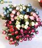 Piccolo fiore del POT del Bush Rosa Bush dei bonsai