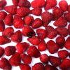 Nouvelles fraises congelées par IQF de collecte/fruits congelés
