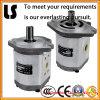 Hydraulic de alta pressão Fuel Oil Gear Pump para Forklift Parte