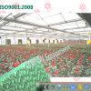 Pleine garniture de refroidissement verte personnalisée pour la serre chaude de fleurs