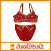 Lace와 Embroidery (SD1222)를 가진 브래지어와 Panty Set