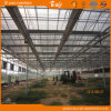 Venlo Structureの多目的Good Appearance Glass Greenhouse