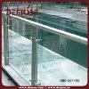 Swimming Pool (DMS-B21195)를 위한 안전 Glass Railing