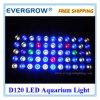 Iluminación científica de la planta del acuario de Dimmable LED del espectro de 8 vendas de D120 DIY
