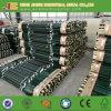 1.25lb de type et de clôture en métal de fer de moulage a clouté le poste de T fabriqué en Chine