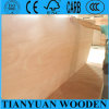 Faia/Oak/Okoume/Bintangor Veneer Faced Plywood com Highquality