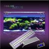 CREE LED con la luz del acuario del conductor LED de Meanwell (SI4BRR090)