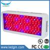 100-110W il rettangolo LED coltiva il Seeding chiaro dell'indicatore luminoso della serra