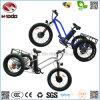 Lsdの浜のスポーツのバイクのためのTiyeの脂肪質の電気三輪車