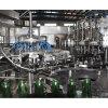 De hete Machines van het Flessenvullen van het Sap