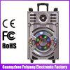 12 Zoll-nachladbare grosse Energie Lound beweglicher Bluetooth Lautsprecher mit Laufkatze---F12-21