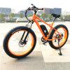 bici grassa elettrica della grande rotella di 48V 500W