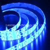 파란 LED 빛 지구 유연한 5630SMD 최고 광도 후미 점화