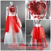 Halter-Abend-Kleid/Partei-Kleid (R-053)