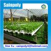 Invernadero hidropónico usado agrícola del sistema completo