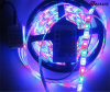 Nastro indirizzabile flessibile 3528 di RGB LED di musica di DC12V