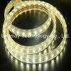 Tensione calda di vendite 5050SMD dell'OEM con le strisce flessibili del LED
