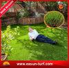 Moquette artificiale esterna dell'erba del più grande fornitore per la casa