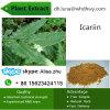 Pó Horny 98% Icariin de Weed da cabra do extrato do Epimedium