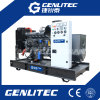 Prix abordable Weichai générateur diesel de 200 KVAs (GWF200)