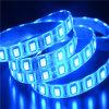 Luz de tira flexível do diodo emissor de luz da cor azul (LM5050-WN48-B)