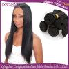Текстура прямых волос продуктов человеческих волос сотка шелковистая мягкая