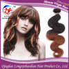 Two Tone Omber Colors Remy Virgin Brazilian Hair Weft Human Hair (HSTB-A768)