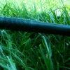 Cinta plástica del goteo de la venta caliente para la irrigación