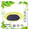 Fertilizante granulado da alga com matéria orgânica
