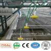 Poultech bester Preis-automatische Hünchen-Rahmen-Geflügel-landwirtschaftliche Maschinen