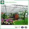 Invernadero de cristal para el jardín de visita turístico de excursión