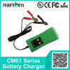 Current differente 6V/12V Output Maintain Battery Charger
