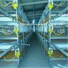 Alto sistema de la jaula de batería de la capa del equipo de las aves de corral del Coste-Funcionamiento