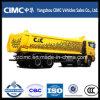 熱いSale C&C Dump Truck 8X4