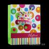 Bolso de compras de papel impreso (PB001-02)