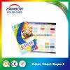 Catálogo de cartões de cores para pintura profissional Paint Wall
