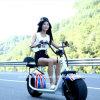 trotinette elétrico barato adulto de Harley 1000With800W dos Cocos da cidade